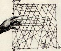 Навигация по звездам и каури