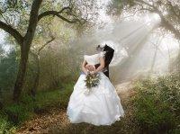 Свадебный шаблон Молодожёны в лесу