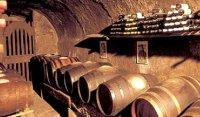 Многие вина, продаваемые в Европе, содержат канцерогены