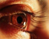 Берегите зеницу ока. Глаз